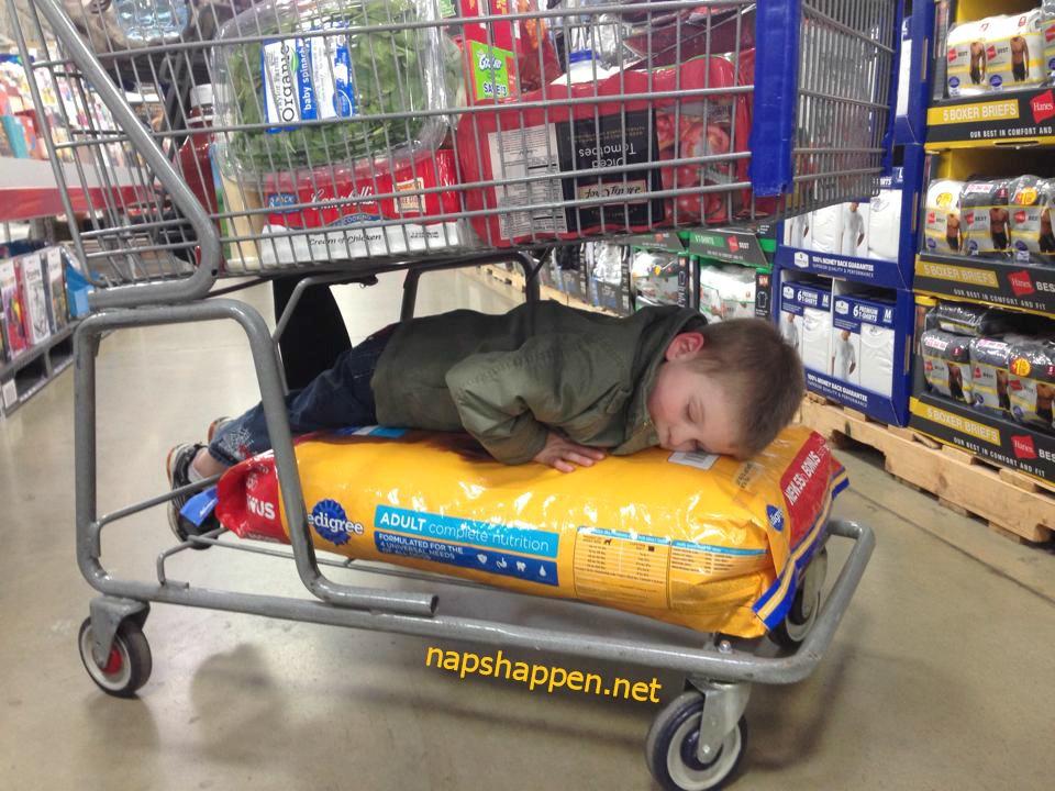 child sleeping on dog food